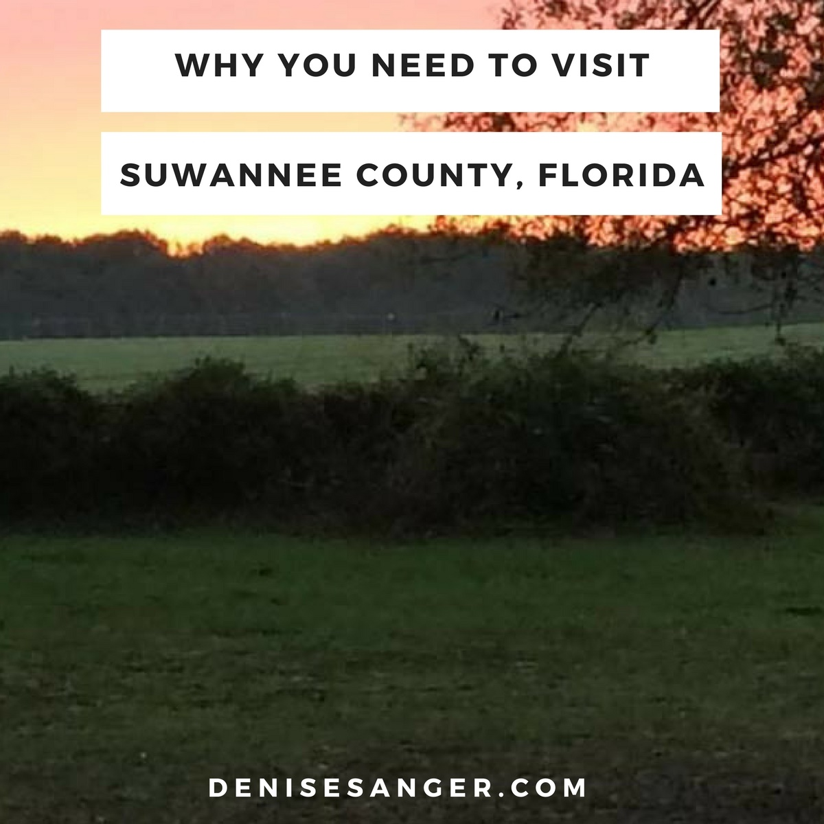Denise sanger health wellness coach living life for Why live in florida